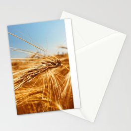 treasures of summer Stationery Cards