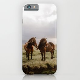 Two Icelandic Ponies iPhone Case