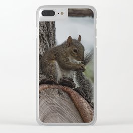 Squirrel Tail Clear iPhone Case