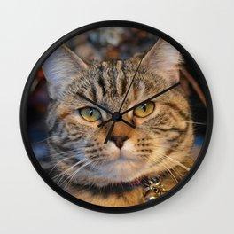 A Little Cat Wall Clock
