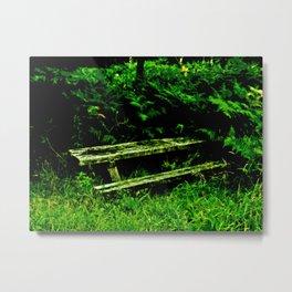 Overgrown Glen Metal Print