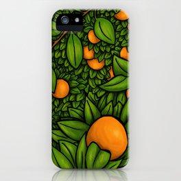 The Orange Grove iPhone Case