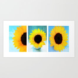 Sunflowers-Triptych Art Print
