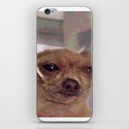 Meme Dog iPhone Skin
