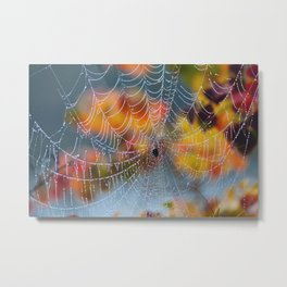Morning Autumn Web Metal Print