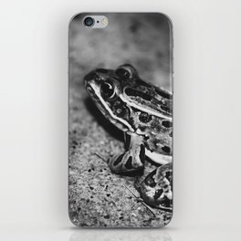 A Summer Frog iPhone Skin