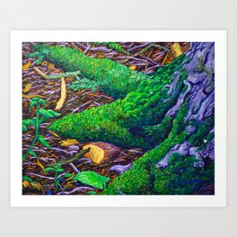 Tree Roots with Moss Art Print