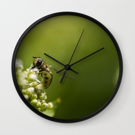 Big eyes #2 Wall Clock