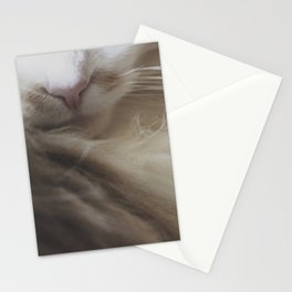 Kibble Nose Stationery Cards