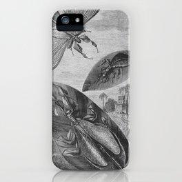 Vintage Insect Illustration Flying Leaf or Katydid iPhone Case