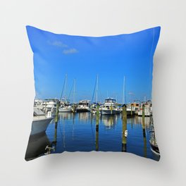 On the Caloosahatchee Throw Pillow