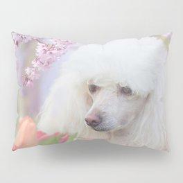 Spring Poodle dog Pillow Sham