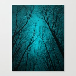 Endure the Darkness Canvas Print