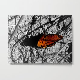 Orange Monarch Butterfly in the Sand Metal Print
