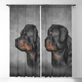 Drawing dog rottweiler Blackout Curtain