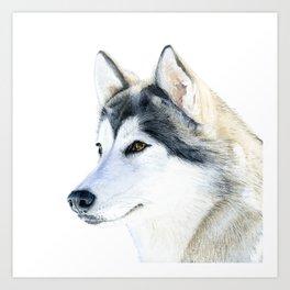 Watercolor Siberian Husky Handpainted Dog Portrait Gift for Dog Lovers Wilderness Art Animal Pet Art Art Print