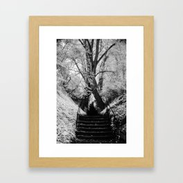 Staircase Framed Art Print