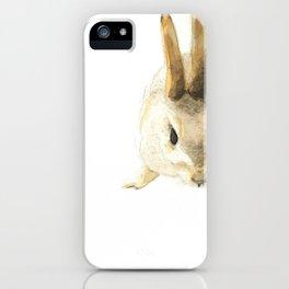 CHINESE ZODIAC (Rabbit)  iPhone Case