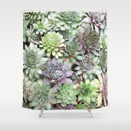 Desert Flower II Shower Curtain