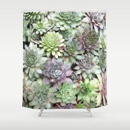 Desert Flower II Shower Curtain