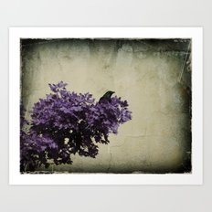 Crow's View Art Print