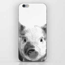 Black and white pig portrait iPhone Skin