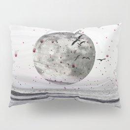Fractures Pillow Sham