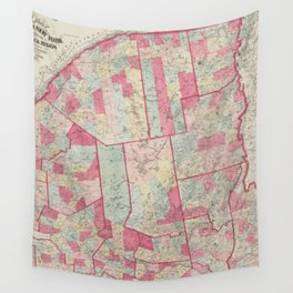 Vintage Map of The Adirondack Mountains (1865) Wall Tapestry
