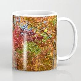 Photo 55 Autumn Fall Coffee Mug