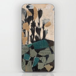 Airmail For The Beauty iPhone Skin