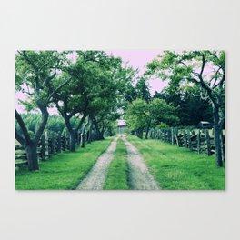Salt Spring Island Heritage Road Canvas Print