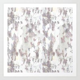 SYCAMORE TREE BARK Art Print