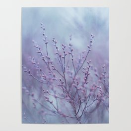 Pale Spring Poster