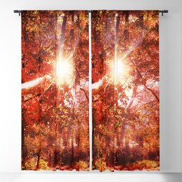 What's Up, Is Down Blackout Curtain