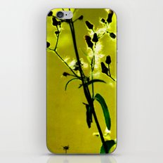 Kissed by the Sun 2 iPhone & iPod Skin