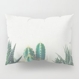Cactus & Succulents II Pillow Sham