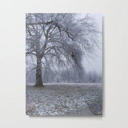 Houghton Hall Park Metal Print