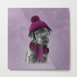 Drawing Puppy Cane Corso in hat and scarf Metal Print