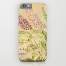 garden 076 buddleia magnifica iPhone Case
