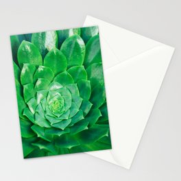 Botanical Gardens - Succulent #686 Stationery Cards