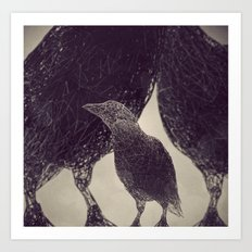 Mr Magpie Art Print