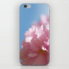 Japanese Spring - Prunus serrulata 2 648 iPhone & iPod Skin