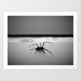 the spider in my living room Art Print