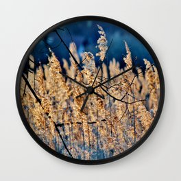 My blue reed dream - photography Wall Clock