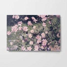 pretty faded in pink Metal Print