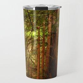 Muir Woods Walkway Travel Mug