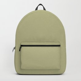 Pastel Meadow Green Solid Color Pairs With Behr Paint's 2020 Forecast Trending Color Back To Nature Backpack