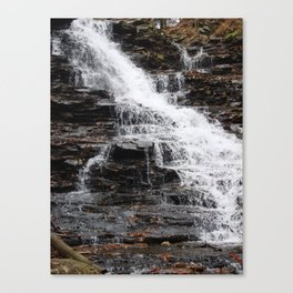 Fall Down Canvas Print