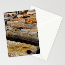 Driven Driftwood Stationery Cards