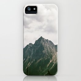 LIVE WILDLY iPhone Case